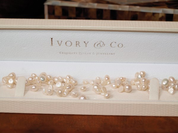 -ivory-and-co-2